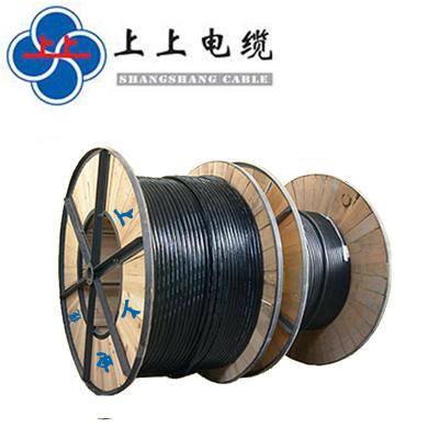 幫客材配汽車電纜 ZR-YJV3*16 上上電纜新能源汽車專用 銅芯交聯聚乙烯阻燃絕緣聚氯乙烯護套電力電纜電線 10米