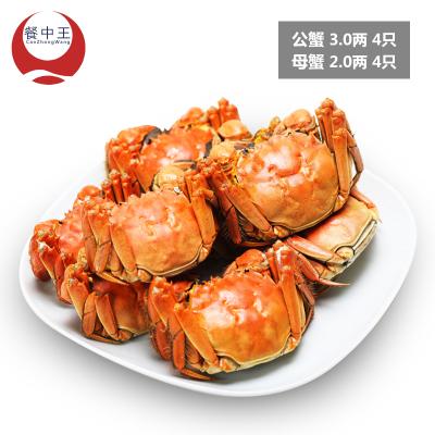 餐中王大闸蟹公蟹3两母蟹2两8只鲜活大闸蟹