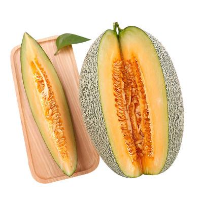 【预售节后发货】百宝源 新疆西周密哈密瓜 1个 3-4斤 脆甜多汁 皮薄多汁 新鲜水果