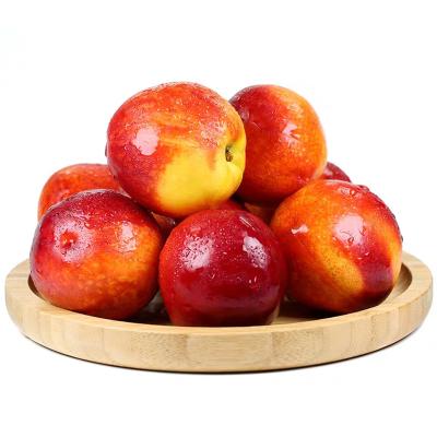 新鮮油桃2.5斤裝 新鮮水果桃子黃桃 現摘現發當季 新鮮直達 雙數發貨