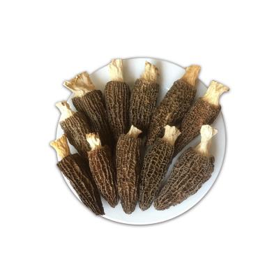 特价羊肚菌干货500g云南特产野生菌新鲜菌汤包干香菇蘑菇菌类特级