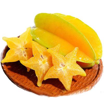 新鲜杨桃孕妇宝宝生鲜热带水果杨桃 2.5斤