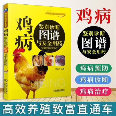 正版 鸡病鉴别诊断图谱与安全用药 高效养鸡技术 养鸡的书 养鸡技术书 大全 养殖 鸡病快速诊断与防治技术书籍 鸡病防治手