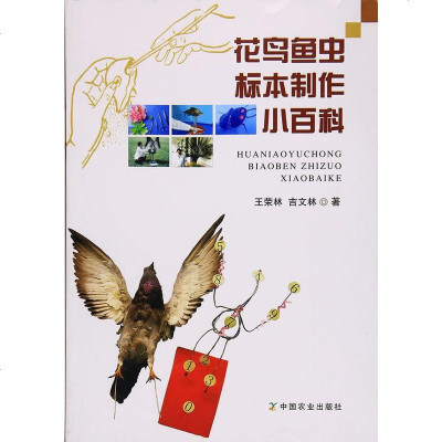 全新正版 花鸟鱼虫标本制作小百科 花标本制作 鸟类标本制作 标本制好使用参考书籍 中国农业出版社 9787109