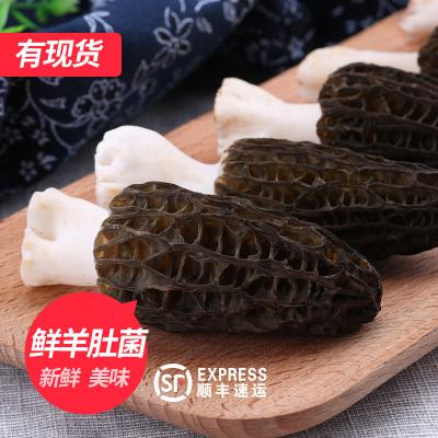 羊肚菌新鲜云南特产羊肚菌蘑菇非干货鲜羊肚蘑野生菌500g