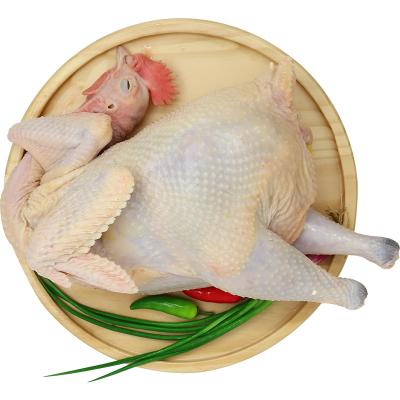 农谣 苏北散养老母鸡 杀后净重约2斤 新鲜现杀土鸡肉 整只装 草鸡 柴鸡 散养土鸡 现杀现发