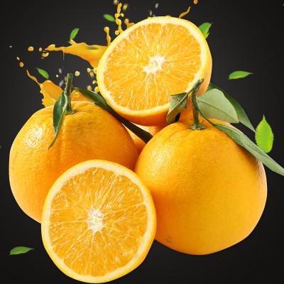 【年后2月3日开始发货】【拍2件发5斤 拍3件发9斤 单果3两左右】眉山脐橙橙子新鲜当季甜2.5斤装【收藏加购送开橙器】