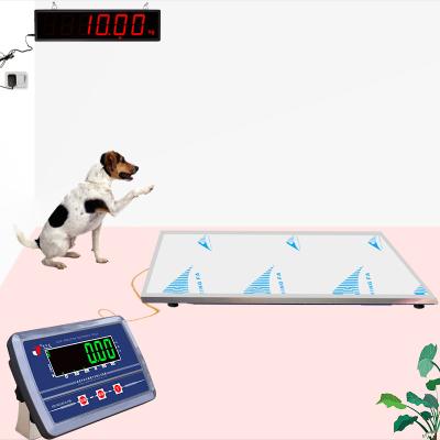 家用金毛狗狗动物体重电子称宠物医院体检台秤畜牧地磅平台300kg电子秤