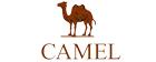 駱駝(CAMEL)